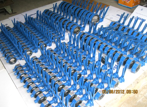 Wafer-Type-Butterfly-Valve-Lever-Operated-Manufacturers-Exporters