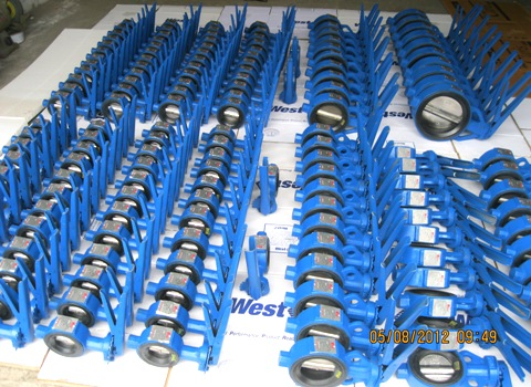 Rubber-Lined-Seated-Butterfly-Valve-Lever-Operated-Manufacturers-Exporters