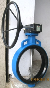 Gear-Actuator-Worm-Gear-Operated-Butterfly-Valve-Manufacturer