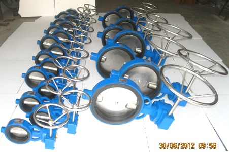 Gear-Operated-Butterfly-Valve-Manufactuers-Exporters